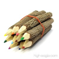TropicaZona Branch & Twig Assorted Colored Pencils  10-Pack  Approximately 3.5 Inches Long  Small Size  Fits Nicely in Child's Hand - B005659FP0