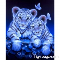 HMLAI 5D DIY Diamond Painting  Full Drill Embroidery Painting Canvas Wall Sticker for Home Office Wall Decor-Tiger (25x30cm) - B07F3BRWXG