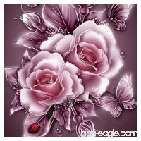 HMLAI 5D DIY Diamond Painting Full Drill Embroidery Painting Canvas Wall Sticker for Home Office Wall Decor-Cat Reflection-Retro Rose (A) - B07DLNMFYG