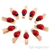 Coolrunner 10x Ladybug Wooden Pegs Birthday Baby Shower Craft Clips Clothespin Favour New Wedding Decoration - B01LYVJIUY