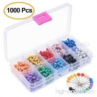 Kuuqa 1000 Pieces 1/8 inch Map Push Pins Map Tacks 10 Colors (Each Color 100 PCS) - B01N6N0BXS