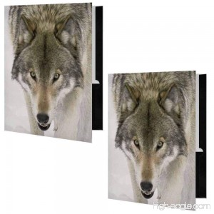 Wolf Face Presentation File Folder - Set of Two - B01CX76LGY